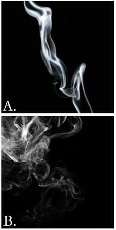 biała szałwia oczyszczanie, palenie dym