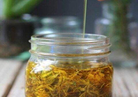 Oliwka ziołowa regenerująca stawy i kręgosłup-domowy przepis