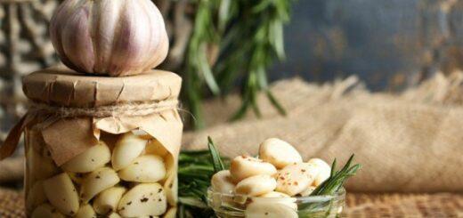 Czosnek kiszony, w oliwie lub marynacie przepisy i zastosowanie
