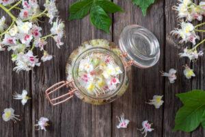 kwiaty kasztanowca przepis