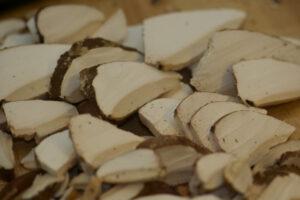 przepisy białoporek huba