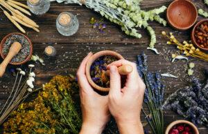 Jaki wypływ wywiera na organizm smak ziół i potraw?