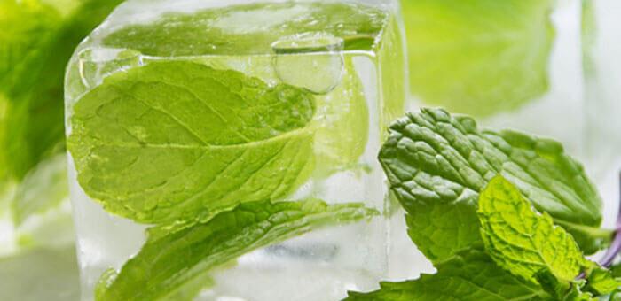 zioła w kostkach lodu zamrożone na różne sposoby
